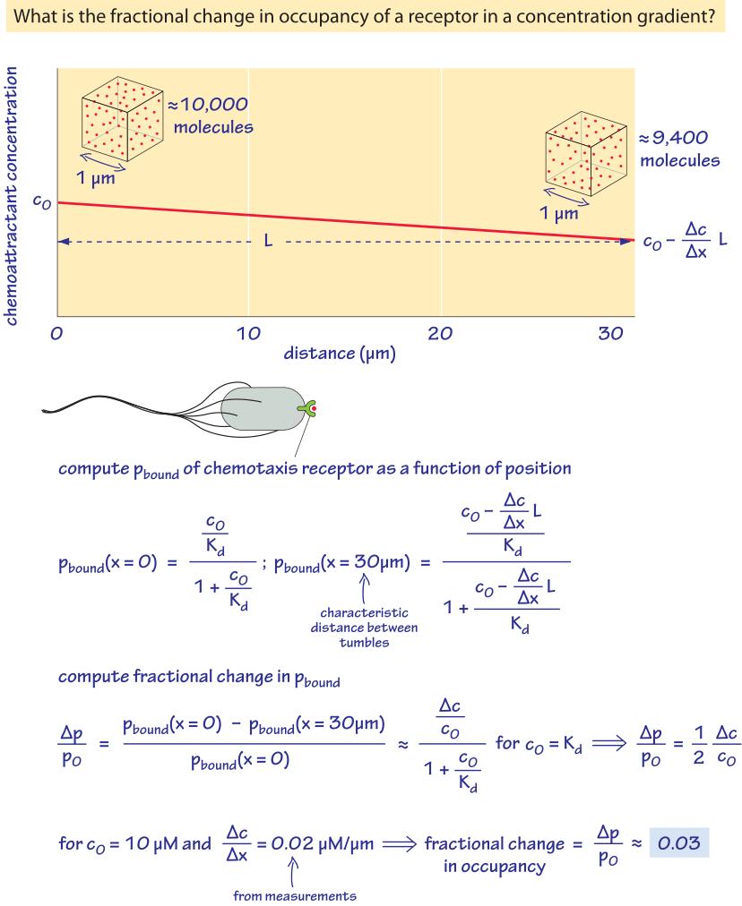 330-f5-ChemotaxisGradientCalc-1