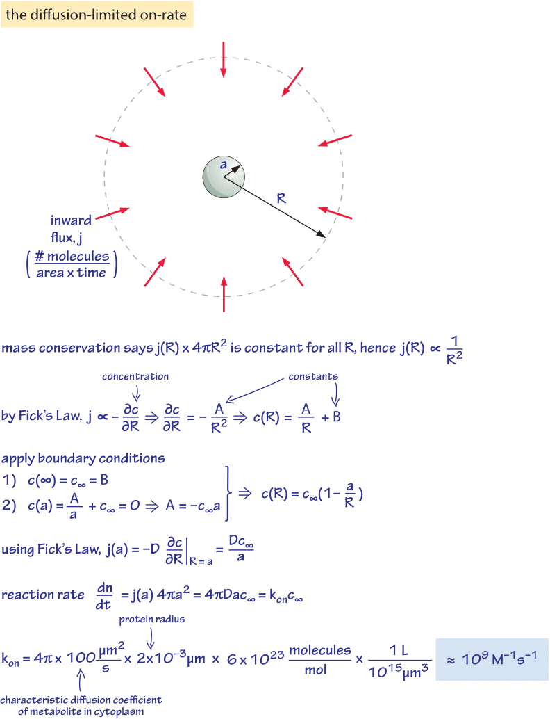 Calculate binding energy of uranium 235 dating 3