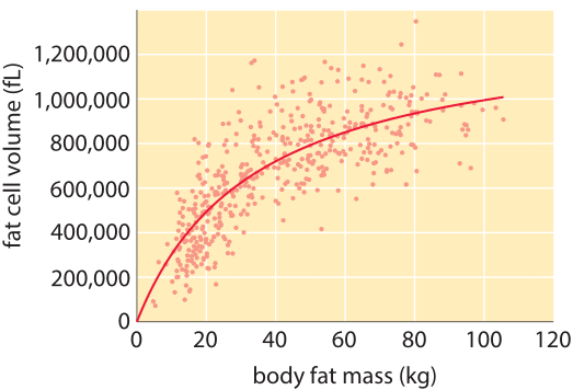 Figure 5: Average fat cell size as a function of body fat mass. As the fat content of a person increases the average adipocyte volume initially increases almost linearly and then saturates. Thus the change in total fat among humans can be attributed mostly to larger cells of a similar number and at more extreme disparities also to change in the number of fat cells. (Adapted from K. L.  Spalding, Nature  453:783, 2008.)