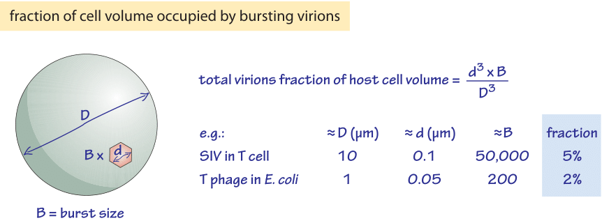 670-f2-VirionFractionCalc-1